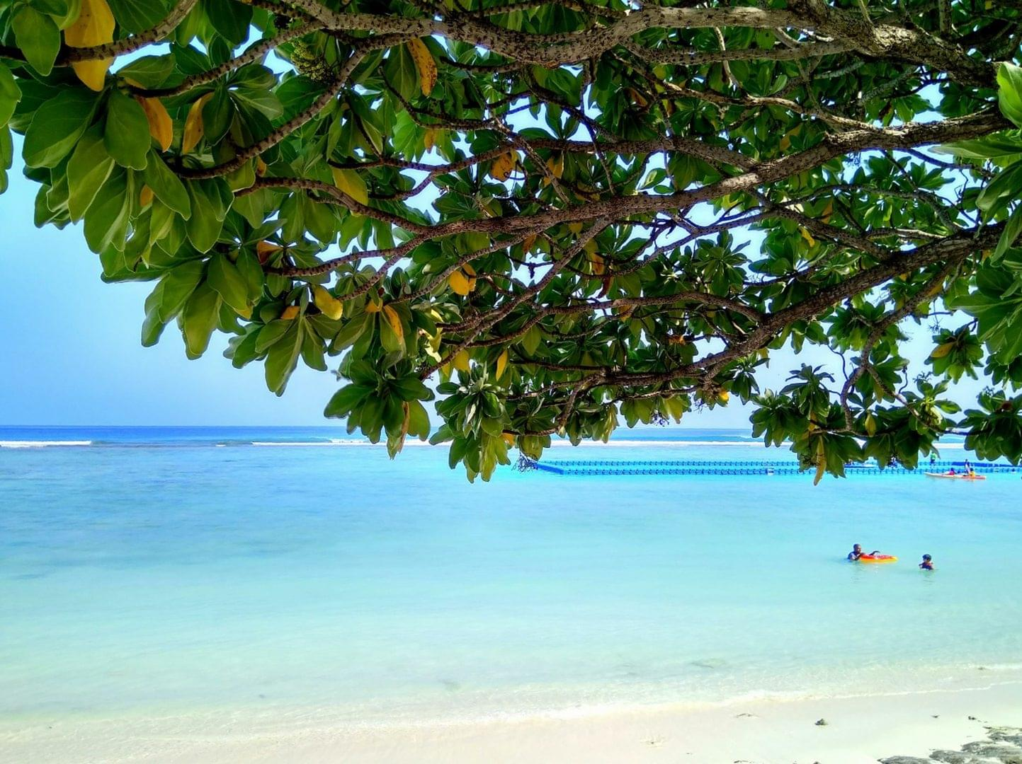 Exclusive Dive Resort Vacations Available Now on PADI Travel