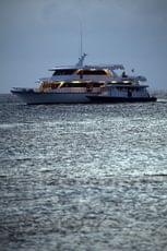 Enjoy your journey on the Liveaboard MY Conte Max