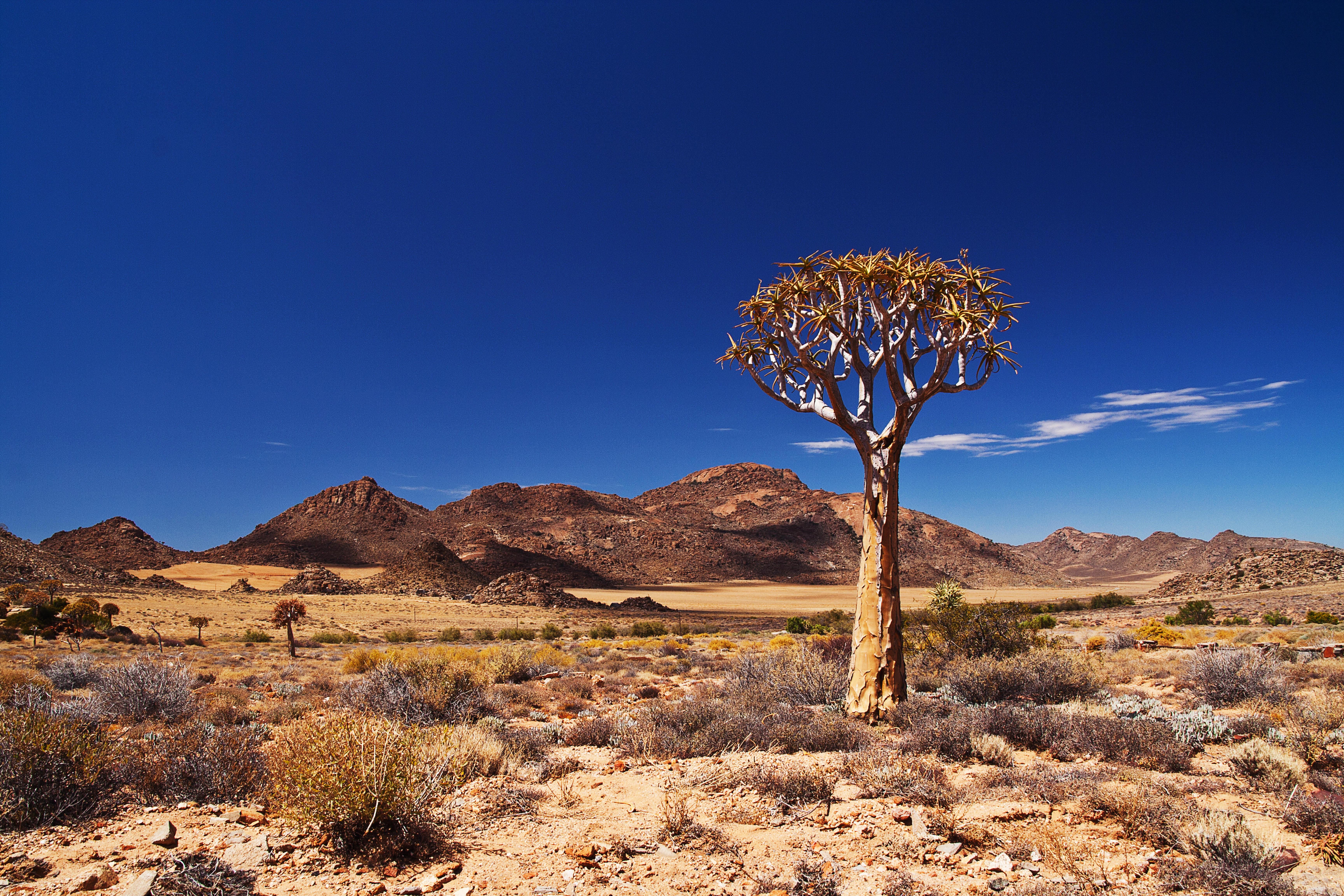 Siti di incontri di Kimberley