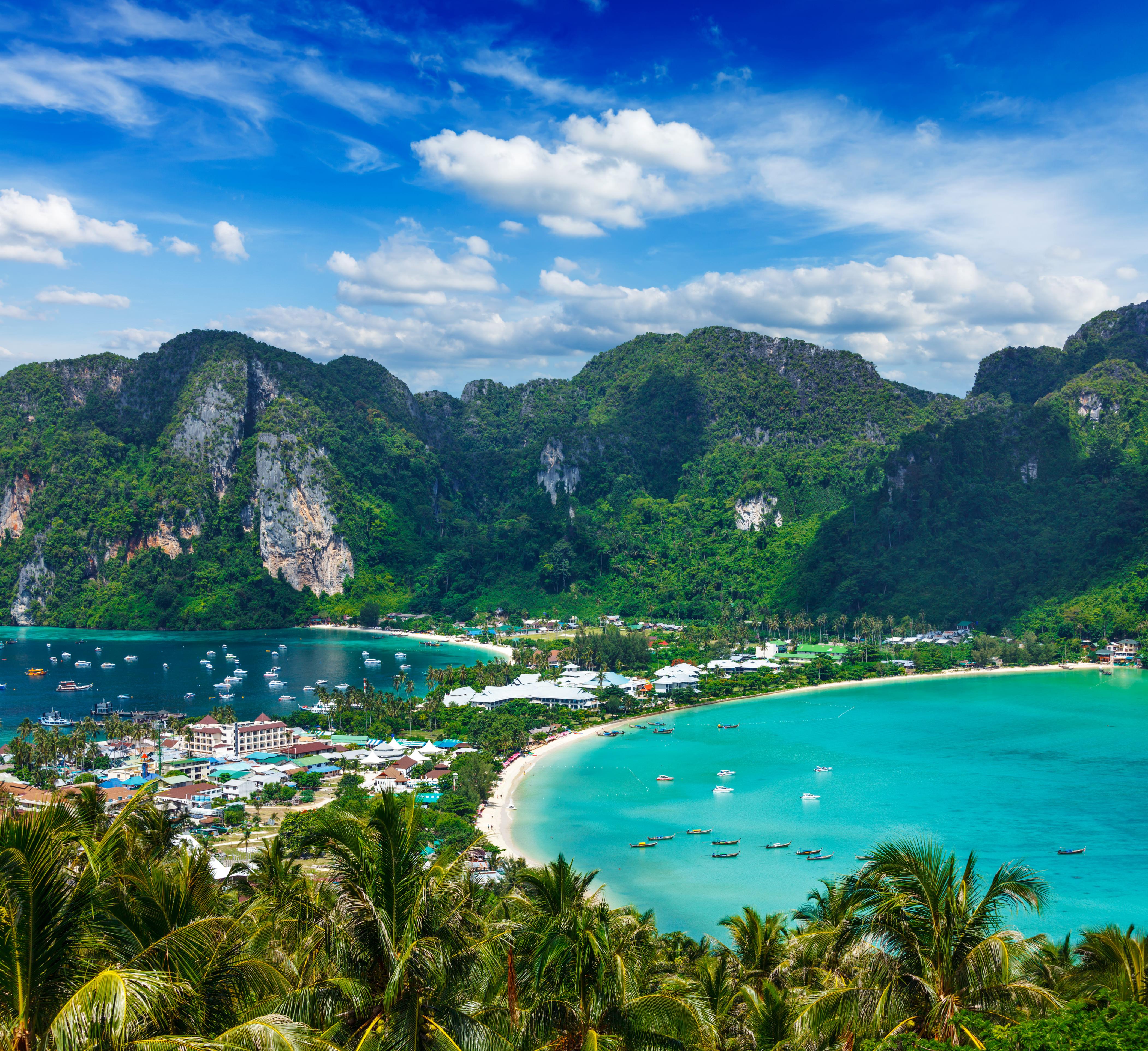 diving in koh phi phi padi travel