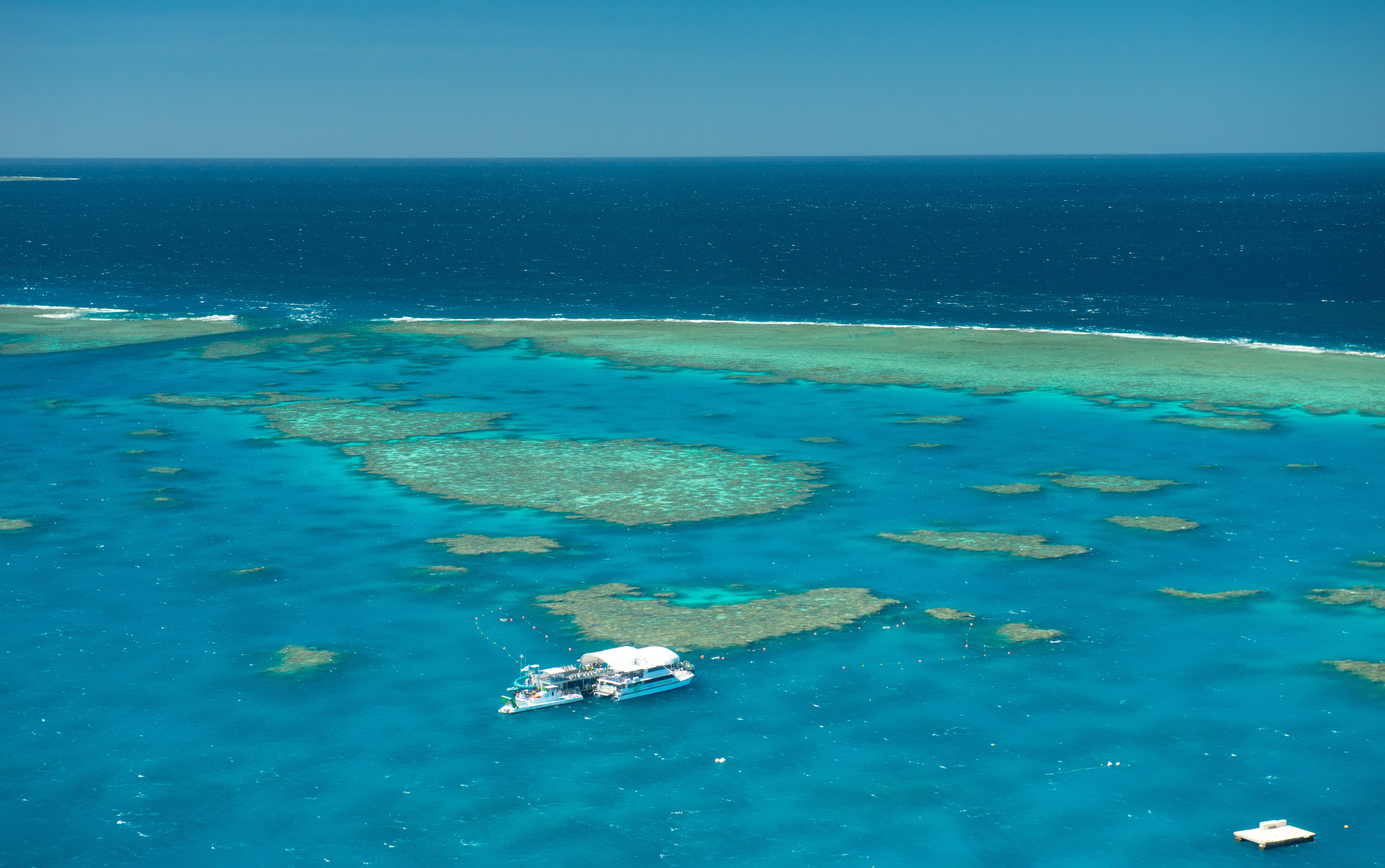 diving in the great barrier reef padi travel rh travel padi com