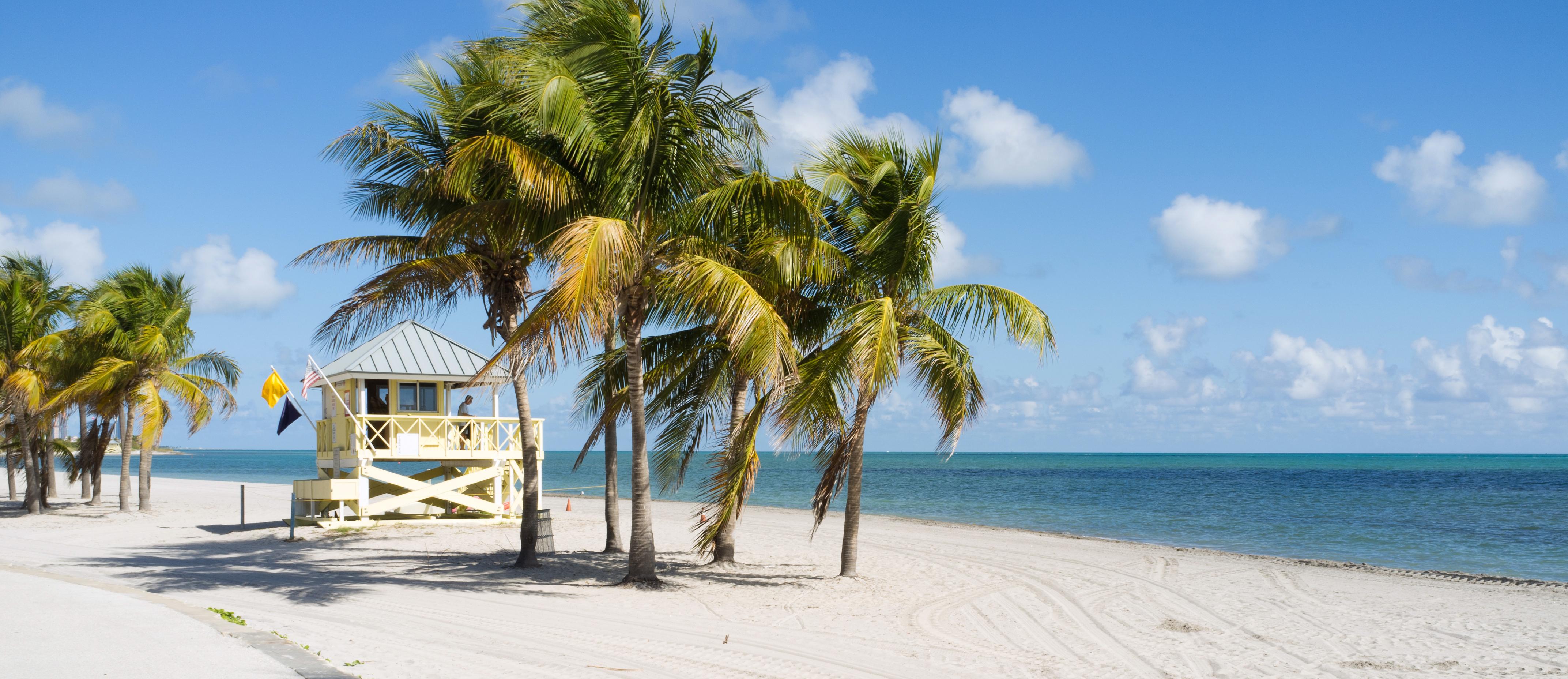 Diving In Florida Padi Travel
