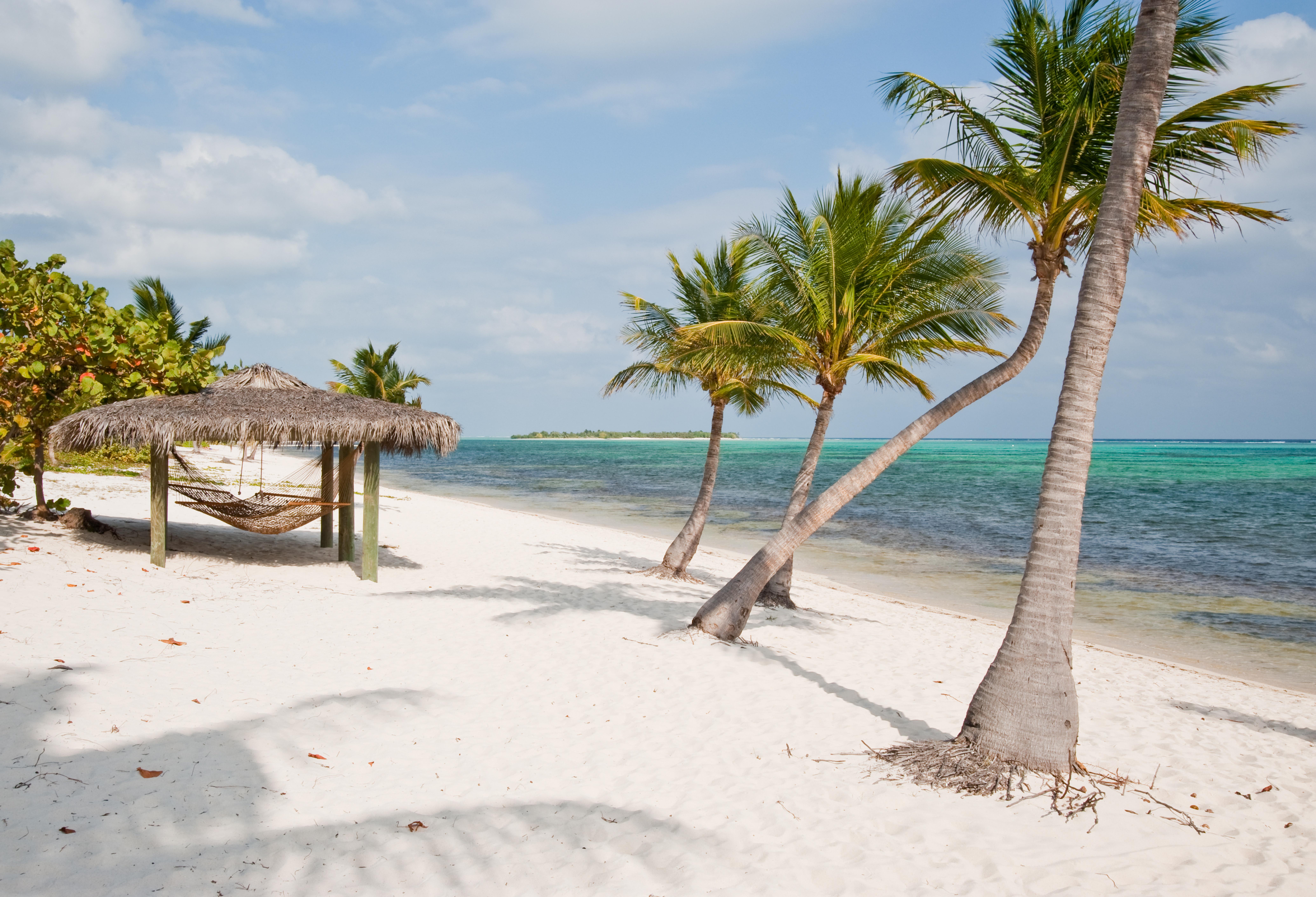 Cayman incontri