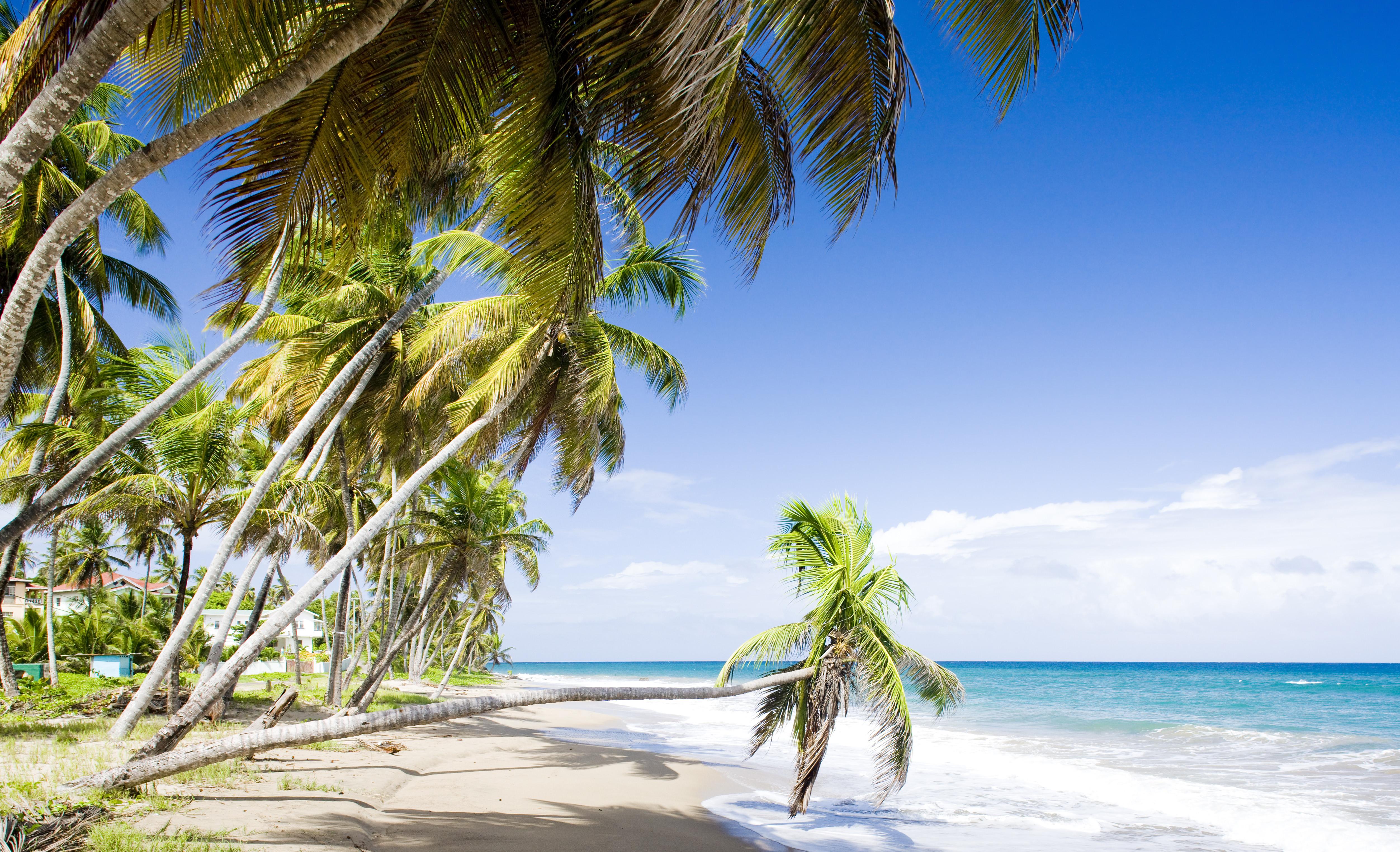 Diving in Grenada | PADI Travel