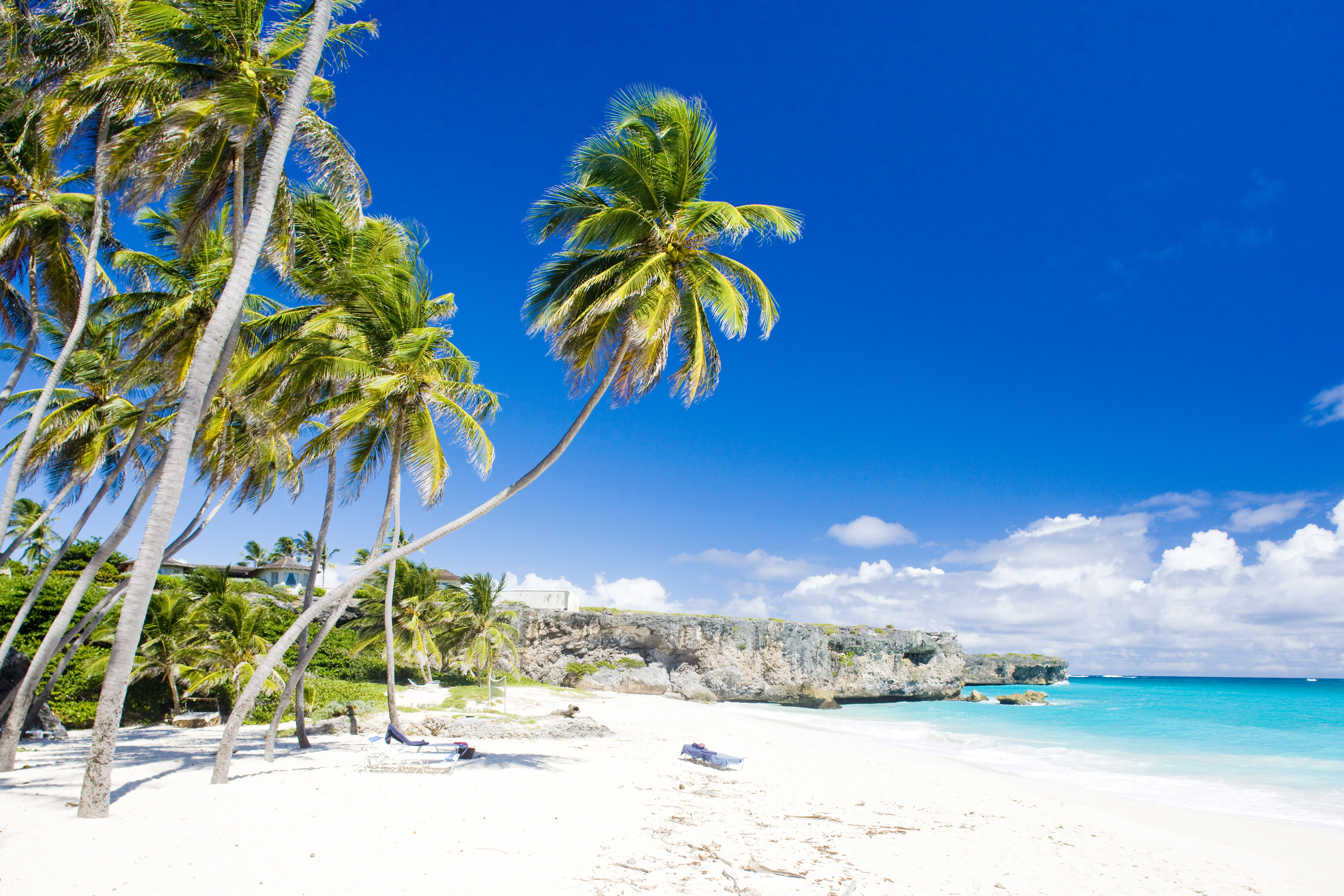 Buceo En Barbados Padi Travel