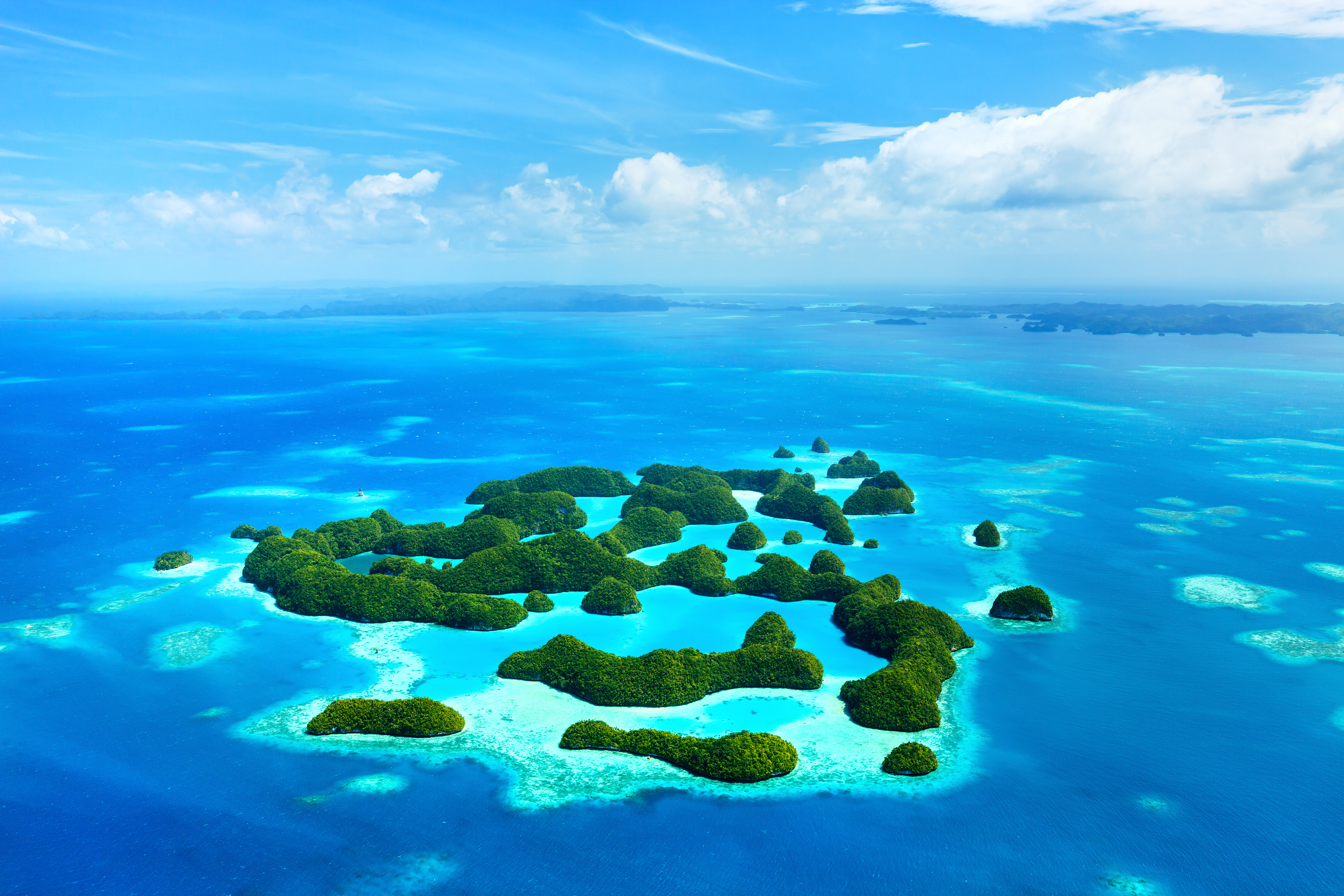 diving in palau padi travel