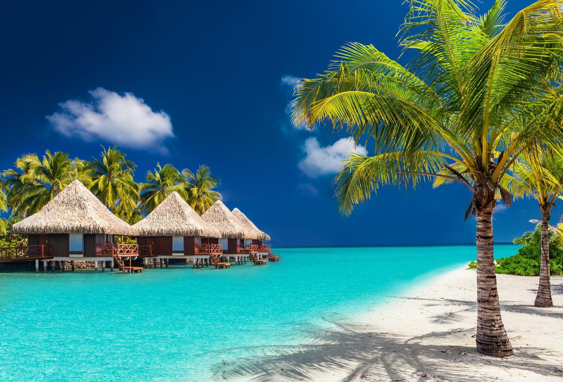 padi travel | scuba diving vacations